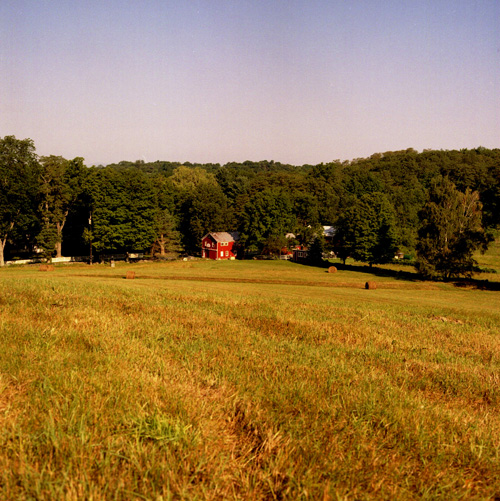 view across the field of the Currant farm